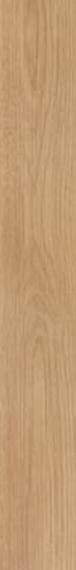 Ragno Orgini Slim miele ret 15x90 cm