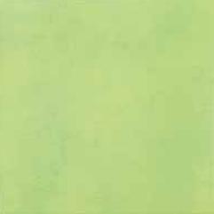Ragno Summer VE 33,3x33,3 cm