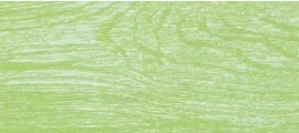 Apavisa Vintage green natural 45x90